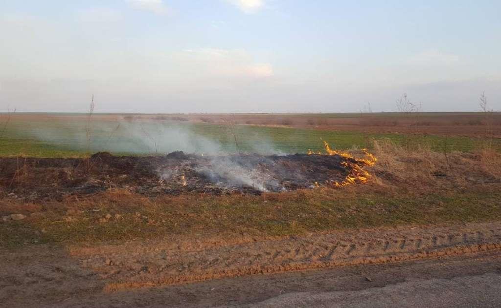 На Волині тривають підпали сухої рослинності