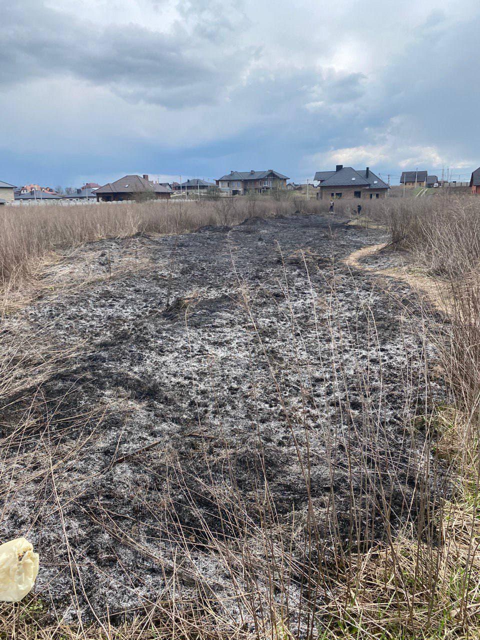 Поблизу Луцька ліквідували пожежу сухої трави