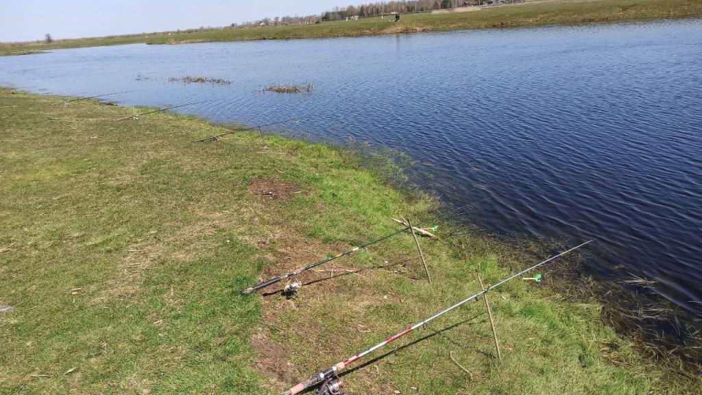 За тиждень на Волині викрили 24 порушення правил рибальства