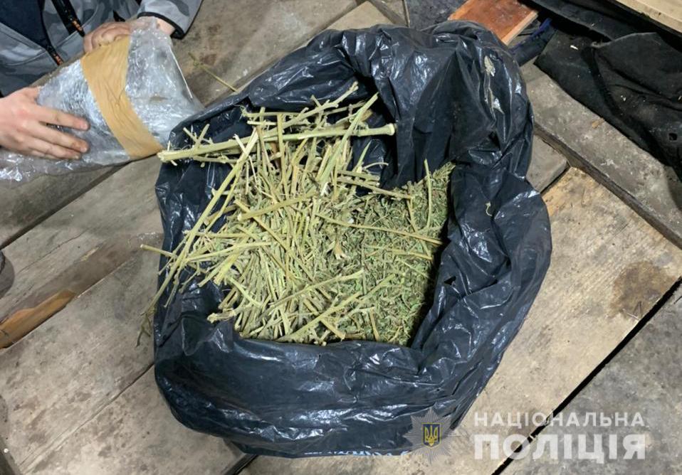 У жителя Нововолинська вилучили 700 грамів наркотиків