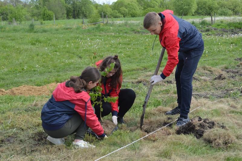 У Ковельській громаді організували екологічну акцію у рамках всеукраїнського проекту