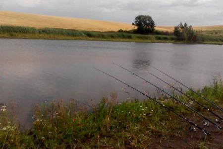 Орендаря водойми на території Горохівської громади визначать через аукціон