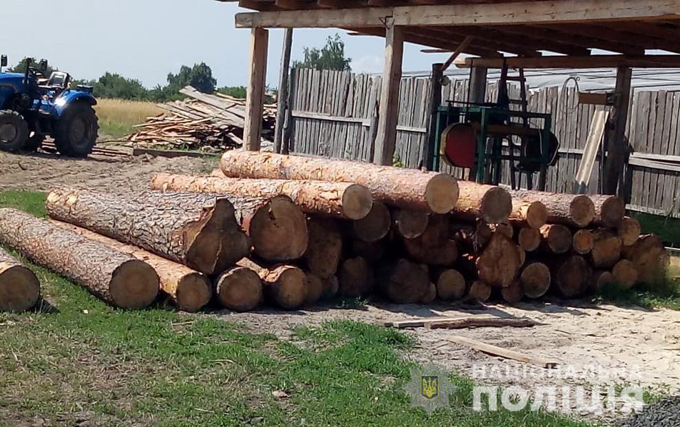 Правоохоронці виявили незаконну деревину на підприємстві мешканця Ківерцівщини