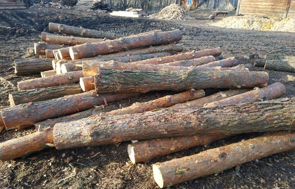 Волиняни постануть перед судом за злочини проти довкілля
