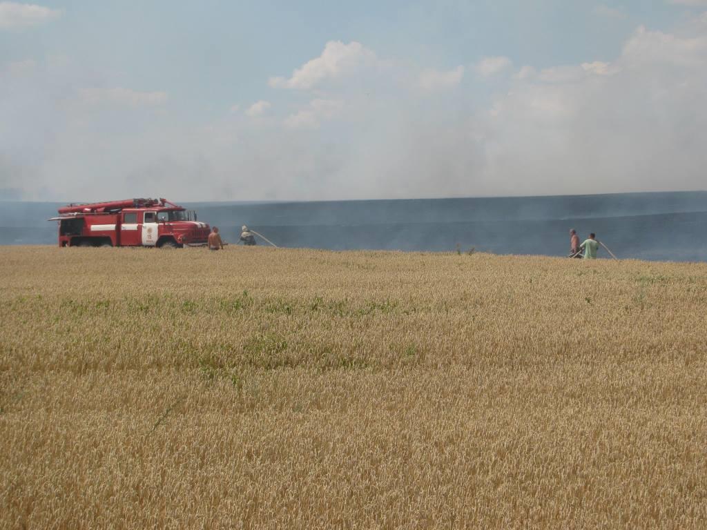 Волинянам нагадують про відповідальність за підпали на полях зернових культур
