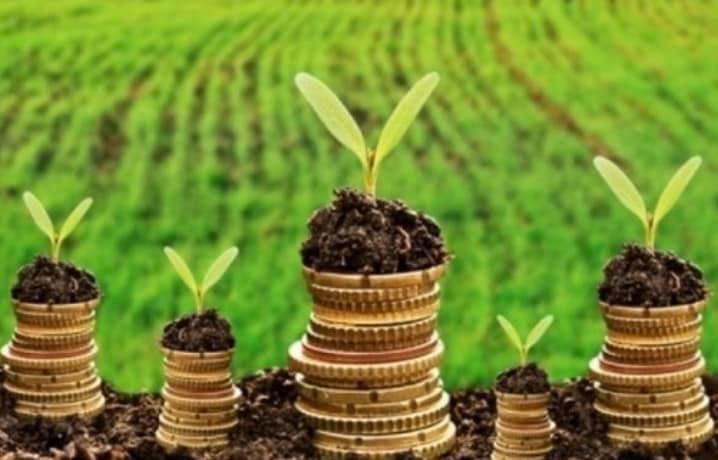 До бюджетів громад Волині надійшло 245 мільйонів гривень плати за землю