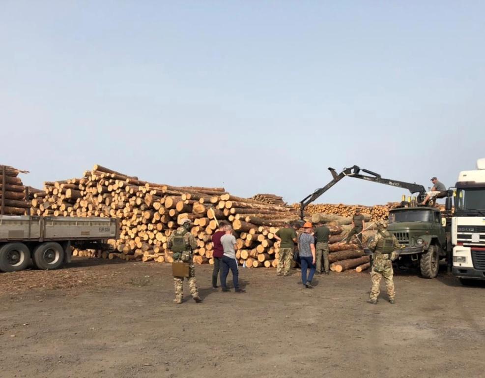 На Волині на деревообробному підприємстві вилучено незаконно зрізану деревину