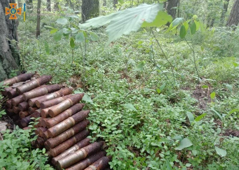 Волиняни натрапили на застарілі вибухонебезпечні предмети під час збирання ягід