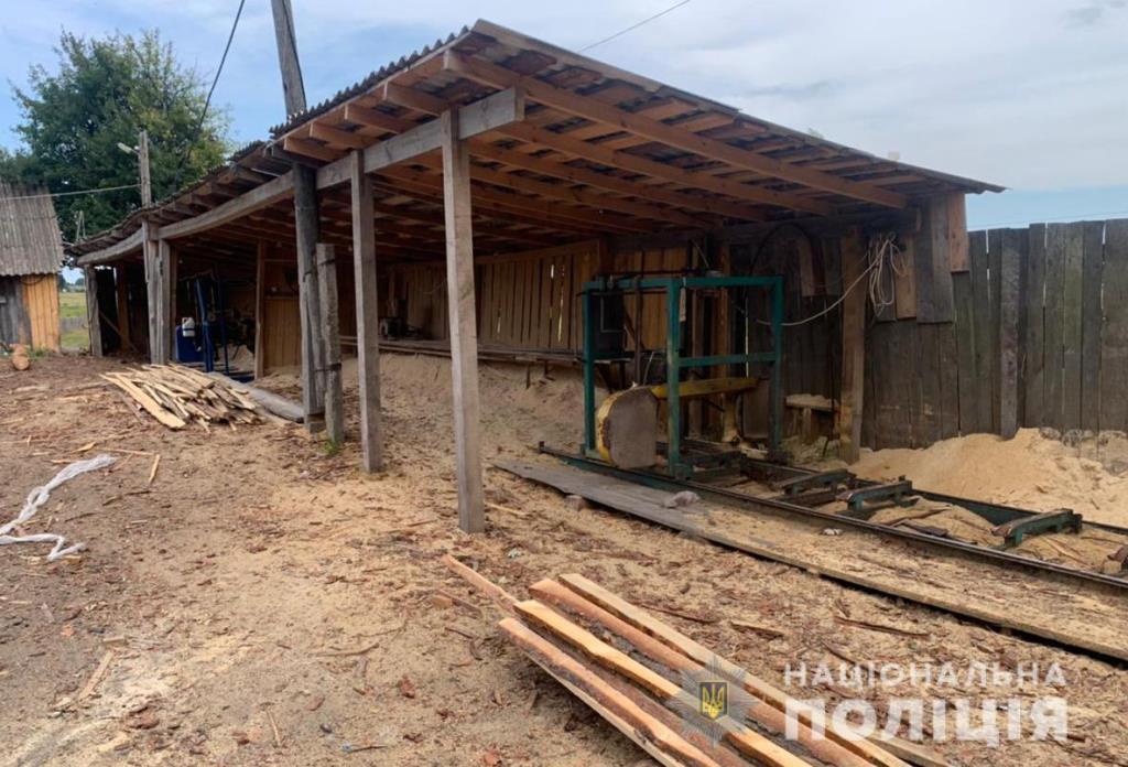 Соснові колоди та дуб: правоохоронці виявили незаконну деревину на підприємствах Ківерцівщини