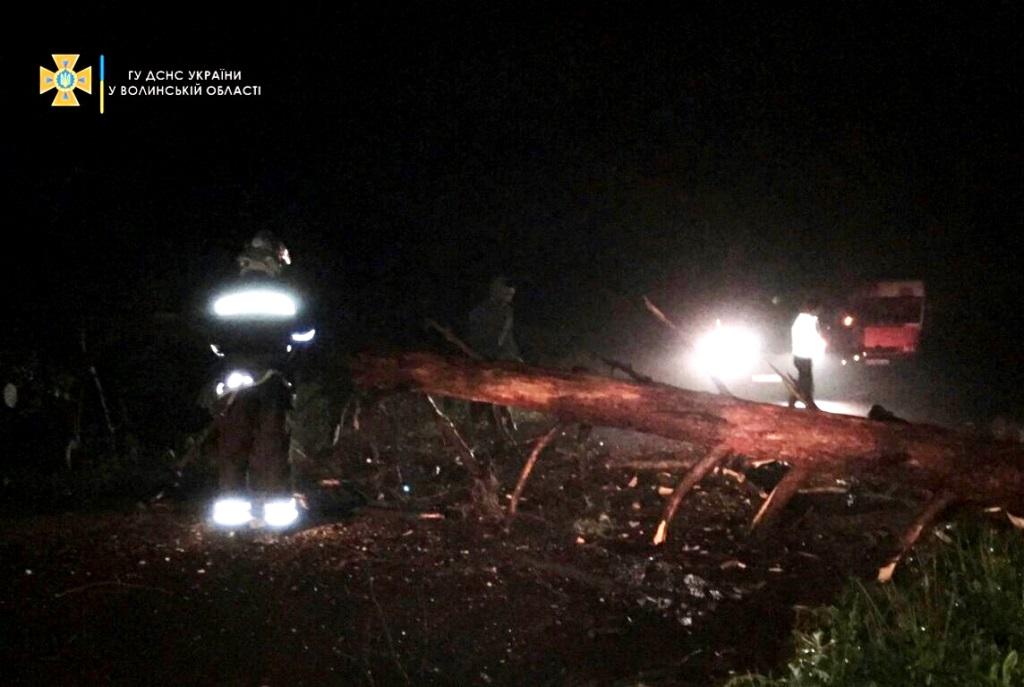 У Берестечківській громаді рятувальники ліквідували наслідки негоди