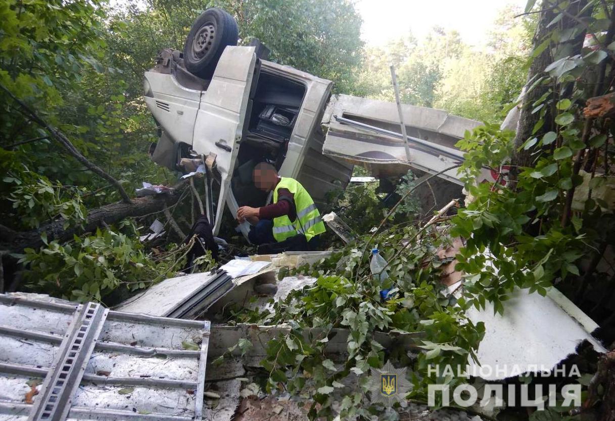 Поблизу Володимира-Волинського Mercedes Sprinter злетів у кювет: двоє постраждалих у лікарні