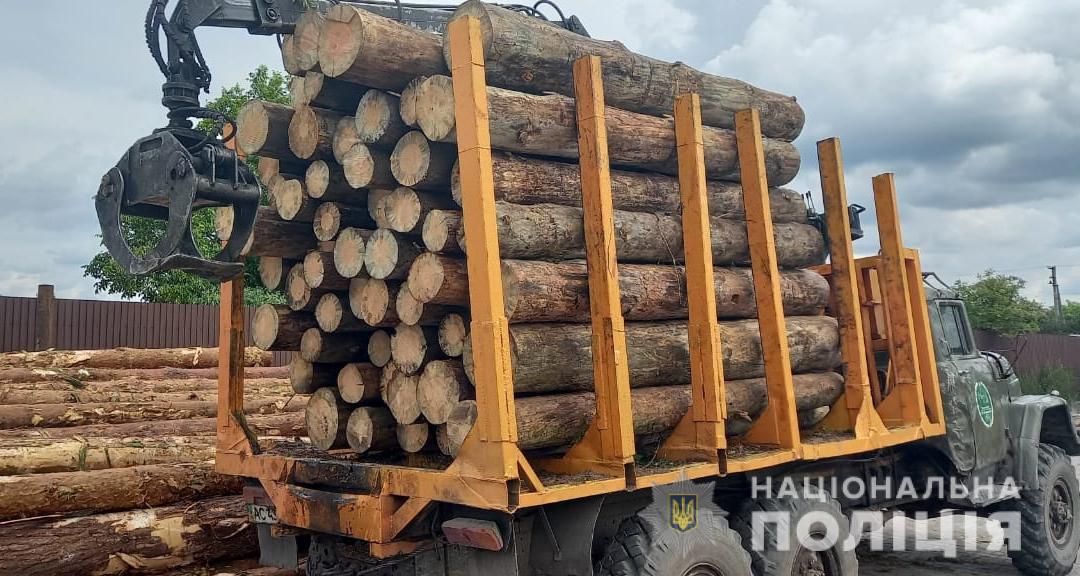 На Квірецівщині правоохоронці вилучили 15 кубометрів сумнівної деревини