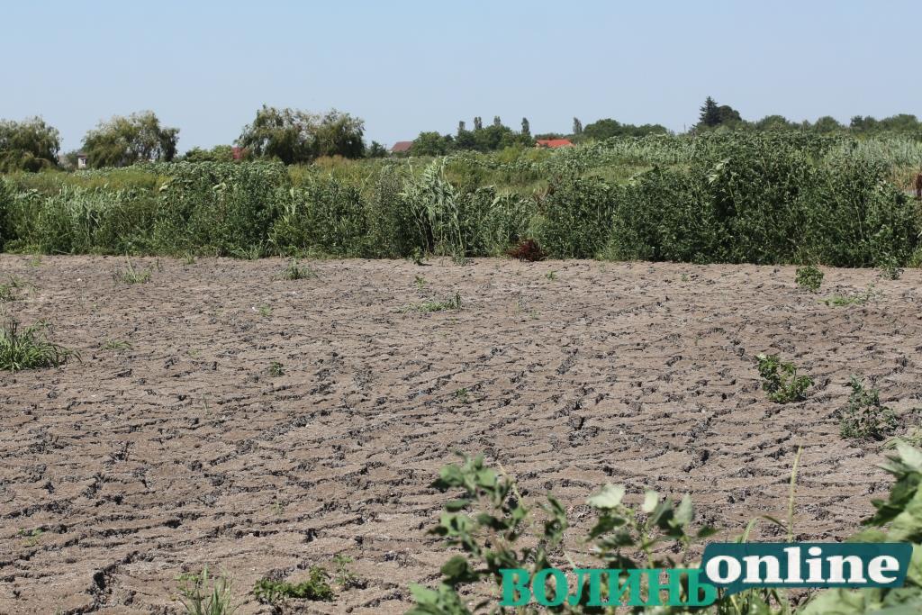 Для КП «Луцькводоканал» придбають мобільний дегідратор для зневоднення осаду
