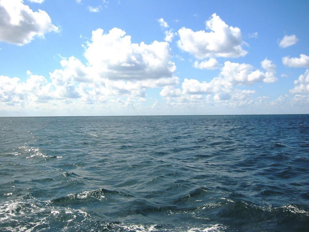 На морських курортах України очікується 5-бальний північний вітер
