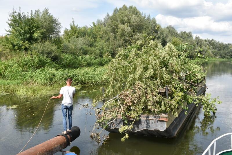 Річку Стир у Луцьку чистять від повалених дерев