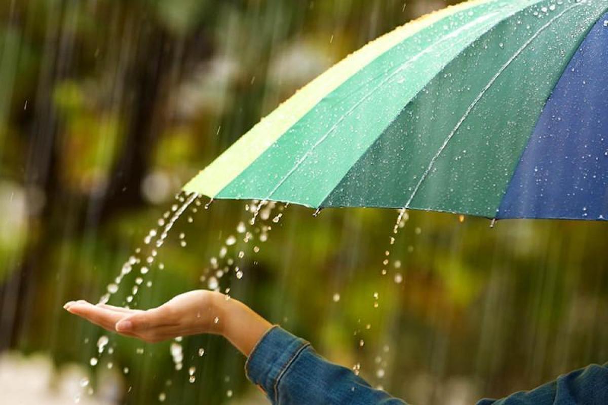 1 вересня в деяких областях України дощитиме