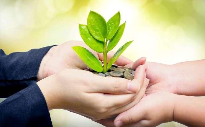 На Волині надходження екологічного податку перевищили 11 мільйонів гривень
