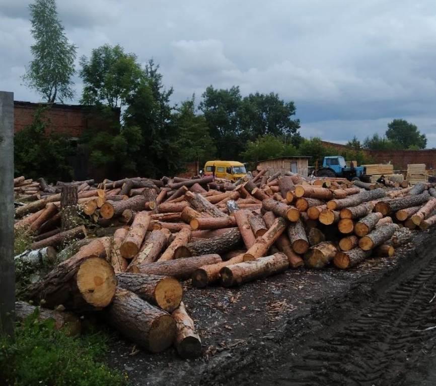 На вилучену на Ковельщині незаконну деревину наклали арешт