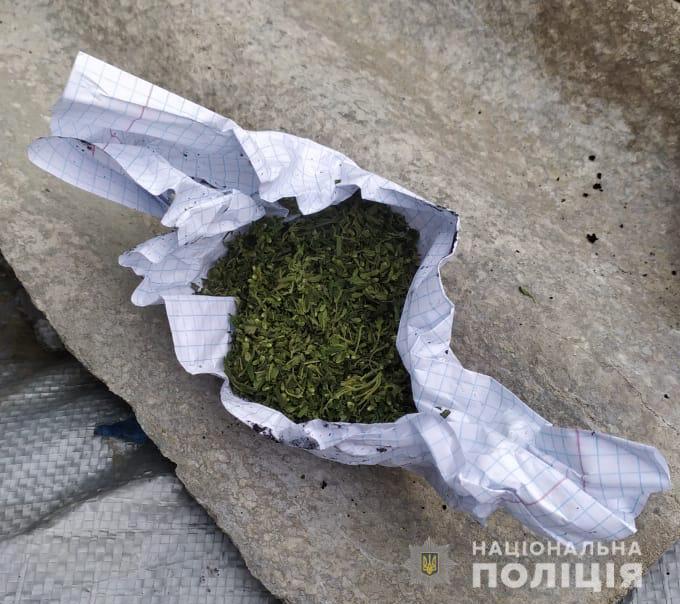 У Луцькому районі поліцейські вилучили у місцевих мешканців наркотики