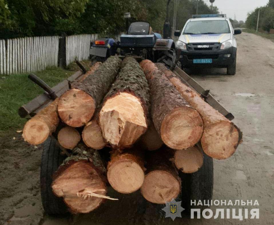 На Волині продовжують виявляти факти перевезення деревини сумнівного походження