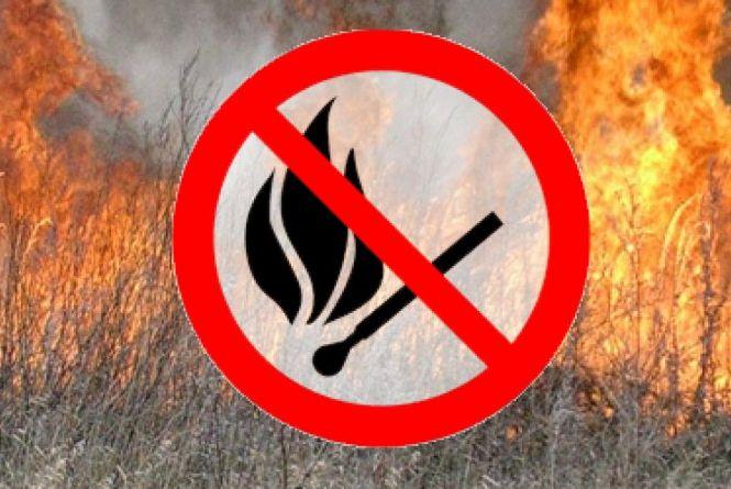 Не хочеш штрафу – не пали сухостій: лучанам нагадують про відповідальність за спалювання сухої рослинності