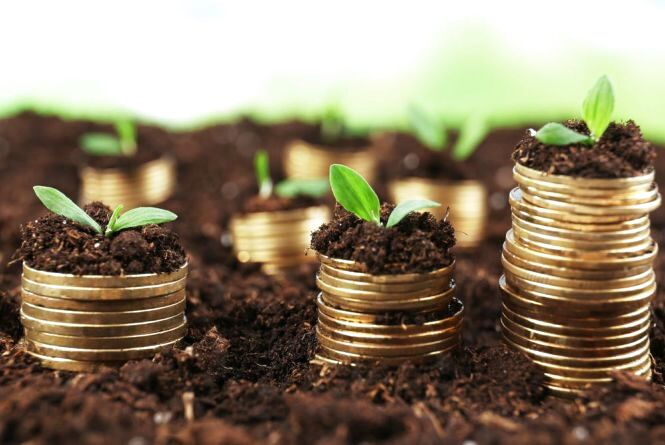 У місцевих бюджетах Волині – понад 350 мільйонів гривень плати за землю