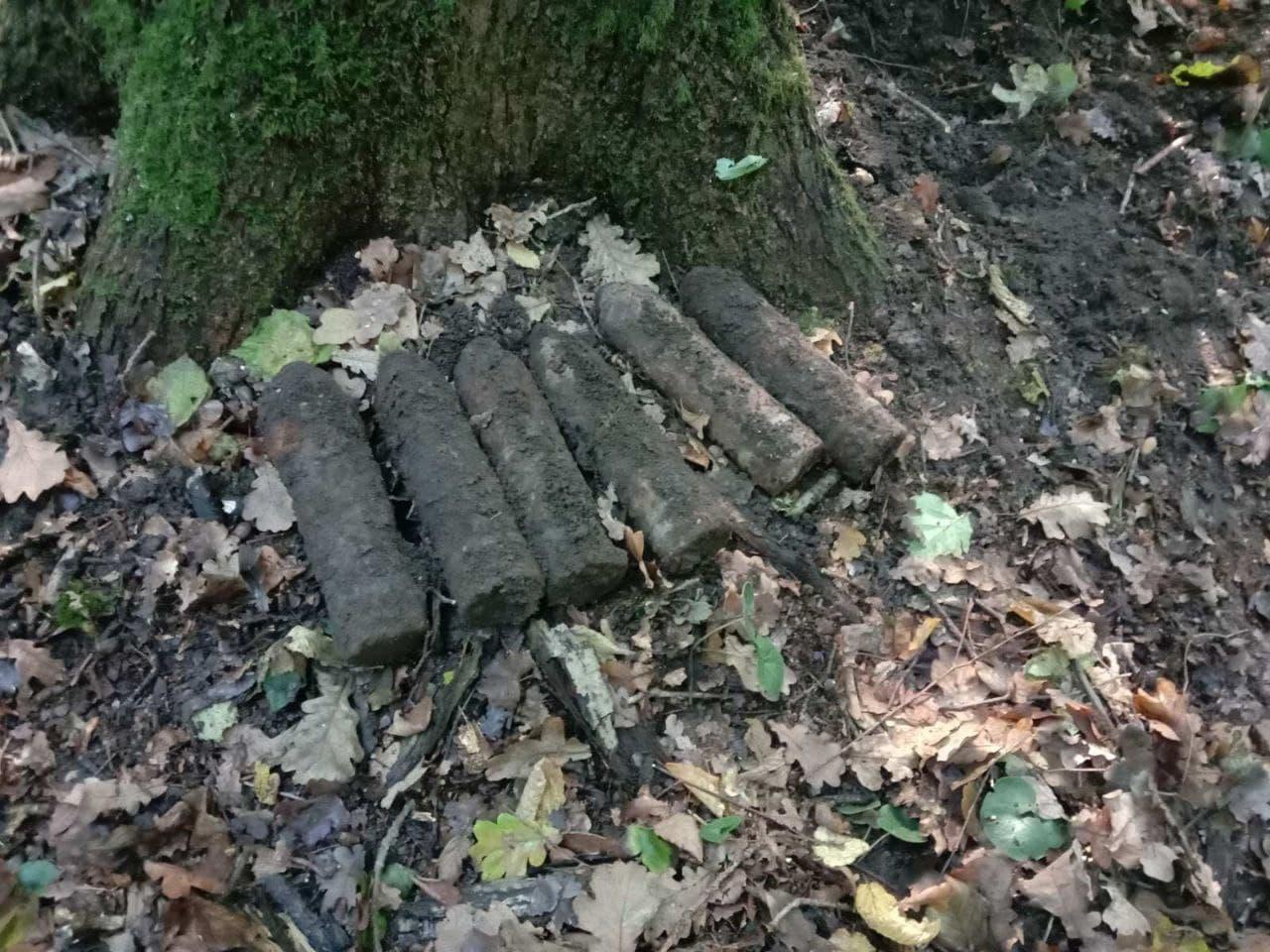 Волинянин під час збирання грибів виявив підозрілий предмет