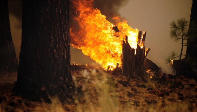 В Анталії – лісові пожежі, підозрюють навмисний підпал