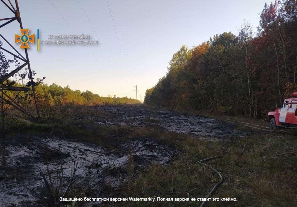 У селищі на Волині під час пожежі загинули двоє осіб